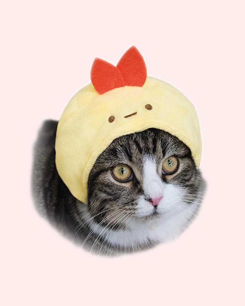 Cat is wearing a cap with an Ebufurai (fried shrimp character)