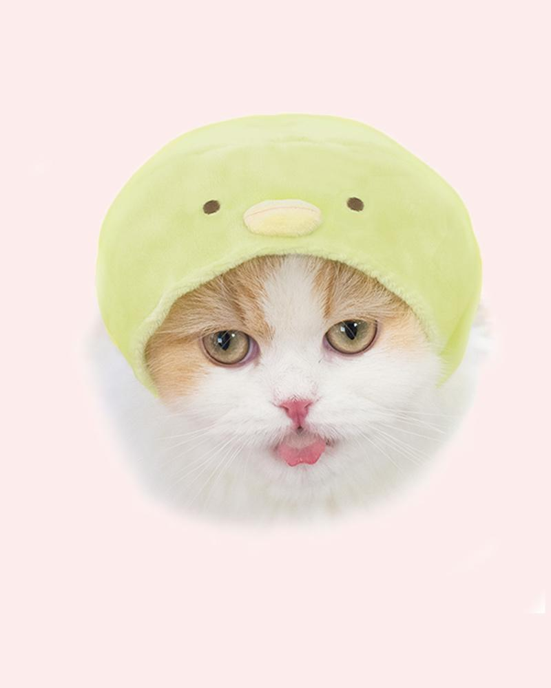 Cat is wearing green penguin cap.
