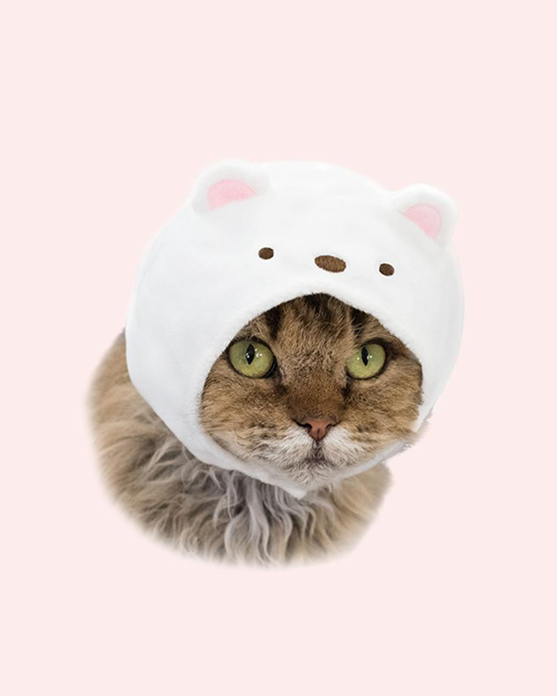 Cat is wearing a Shirokuma cap (polar bear)