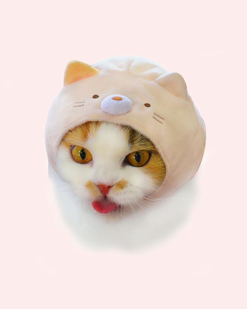Cat is wearing a neko cap (Pink cat)