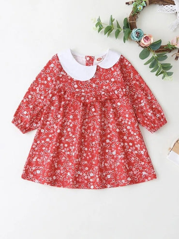 Baby Girl Ditsy Floral Button Detail Smock Dress