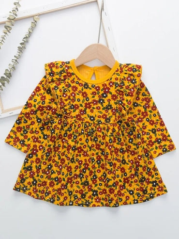 Baby Girl Ruffle Trim Ditsy Floral Dress