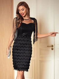 Women Fringe Sleeve Mesh Yoke Contrast Sequin Dress