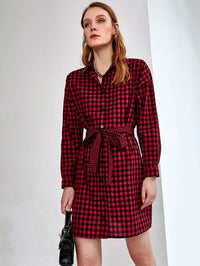 Women Gingham Self Tie Shirt Dress