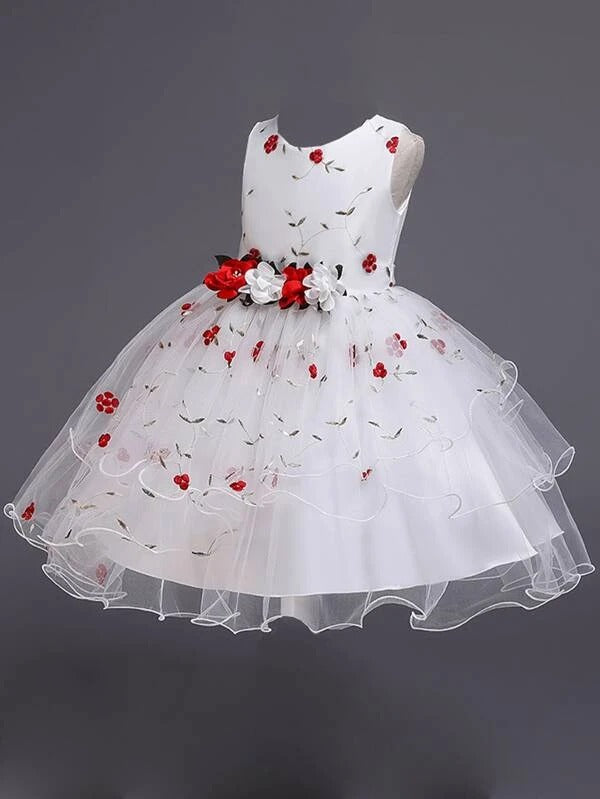 Girls Floral Embroidery Layered Mesh Gown Dress