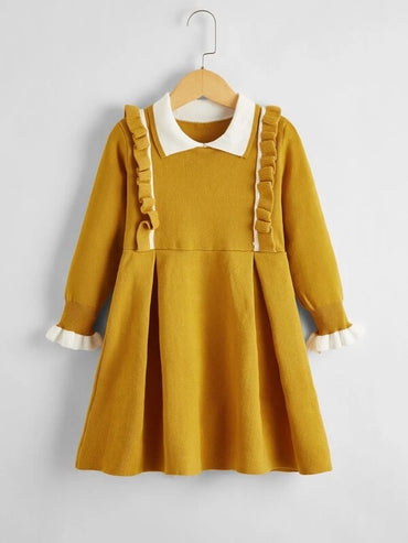 Girls Ruffle Trim Flounce Sleeve Sweater Dress