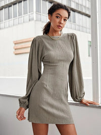 Women Lantern Sleeve Textured Dress