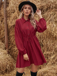 Women Solid Bishop Sleeve Drawstring Waist Shirt Dress