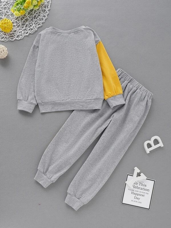 Toddler Boys Cut And Sew Sweatshirt With Sweatpants