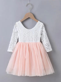 Toddler Girls Lace Bodice Mesh Hem Dress