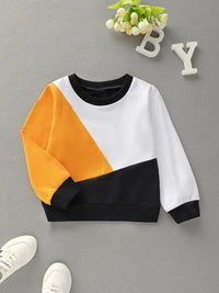 Toddler Girls Cut And Sew Panel Sweatshirt