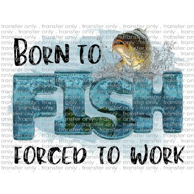 ADV 31 Born To Fish Forced To Work