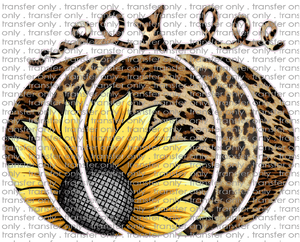 FALL 225 Pumpkin Leopard Sunflower