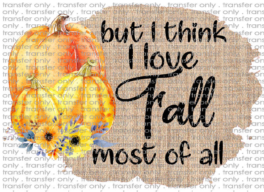 FALL 2 But I think I Love Fall Most