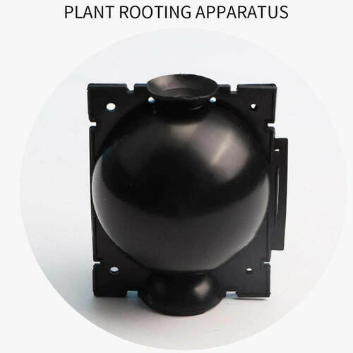 MUS™ Plant Root Growing Box 5PCS