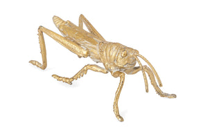 Gold Cast Iron Insect