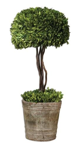 Boxwood Tree Topiary