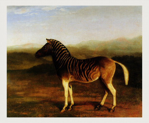 A Male Quagga From Africa, Jacques-Laurent Agasse