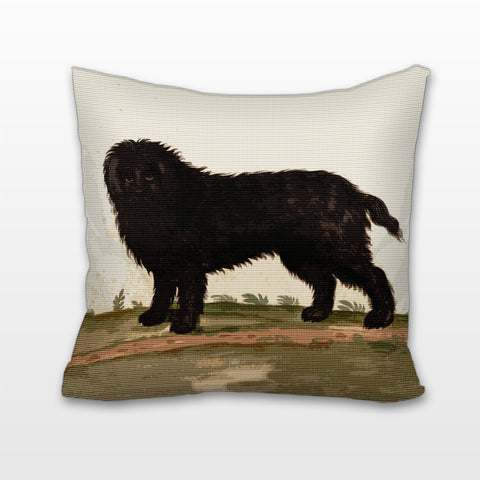 Barbet Dog, Cushion, Pillow
