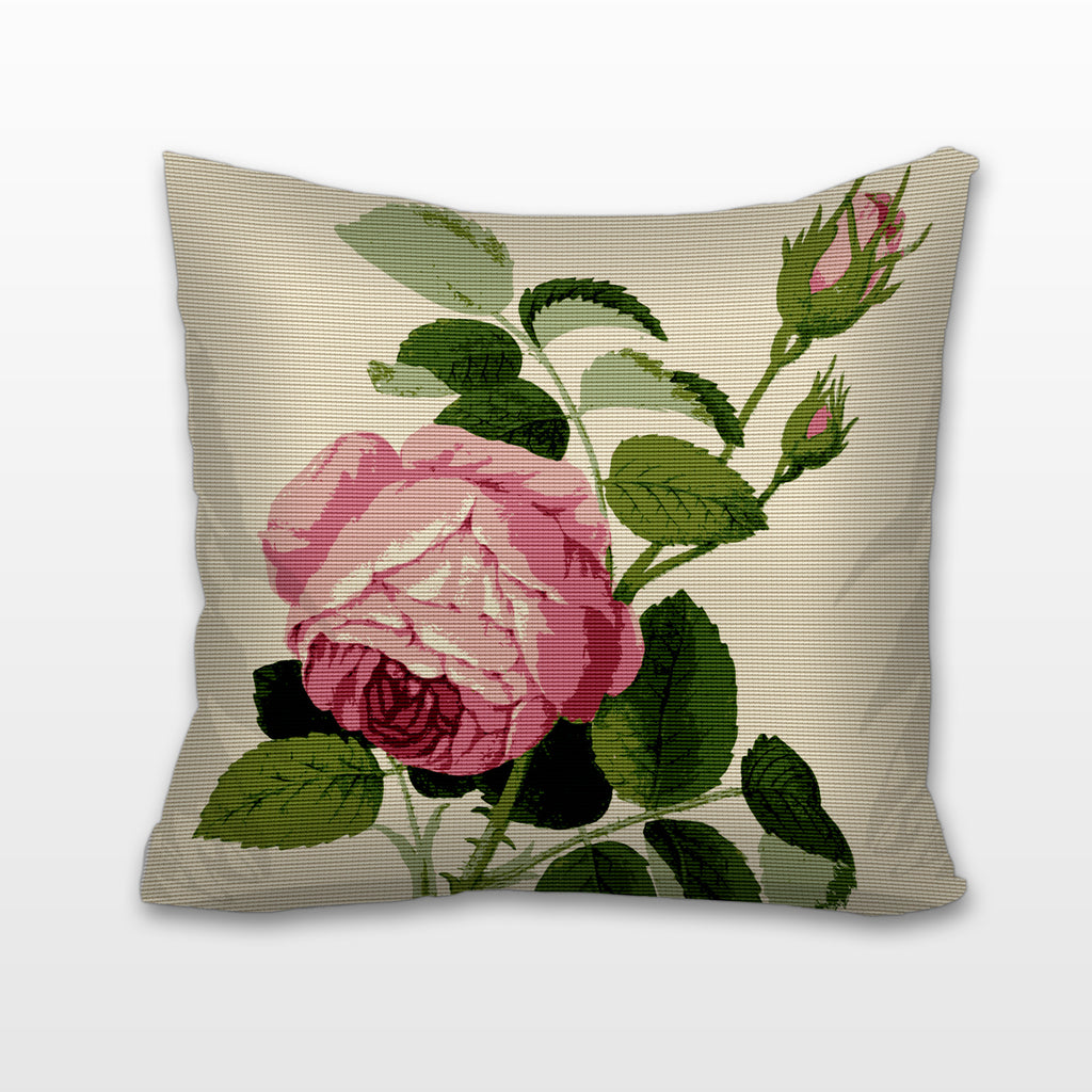 Pink Rosa Centifolia, Needlepoint Cushion, Pillow