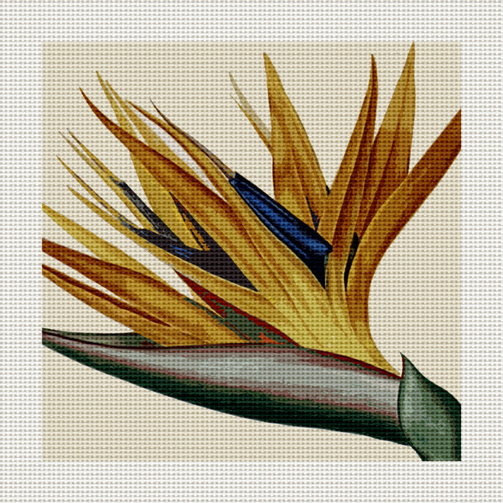 "Bird of Paradise, 5 x 5"" Miniature"