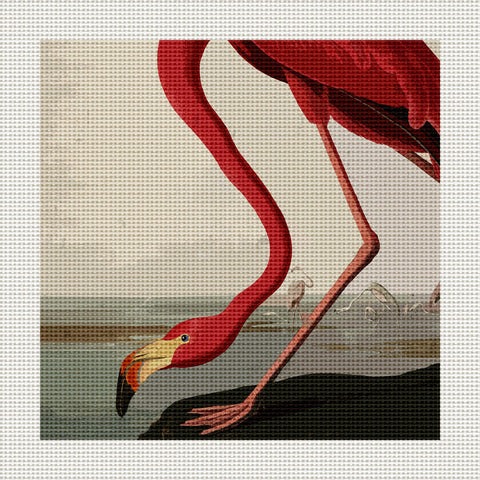 "Flamingo, 5 x 5"" Miniature"