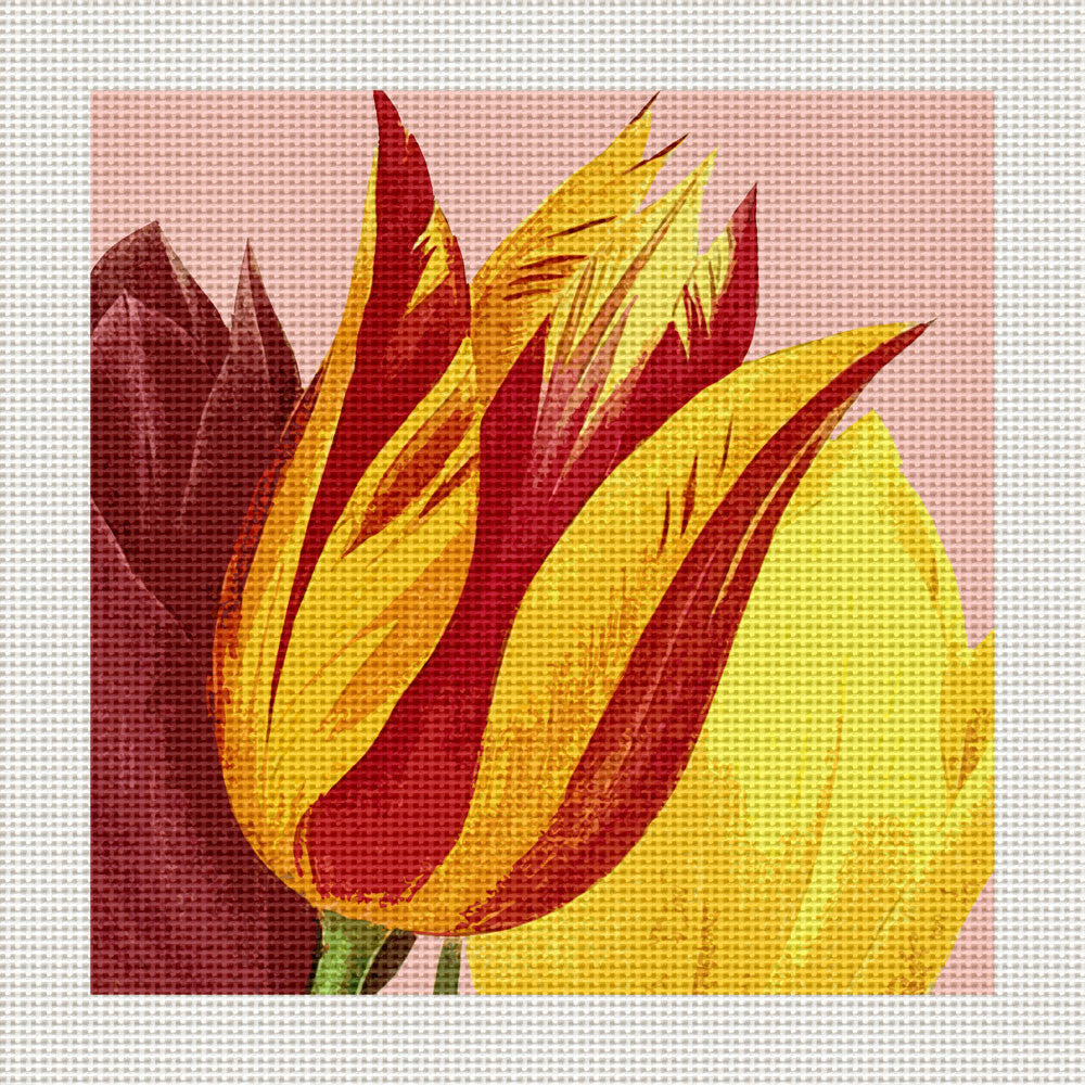 "Red & Yellow Tulip, 5 x 5"" Miniature"