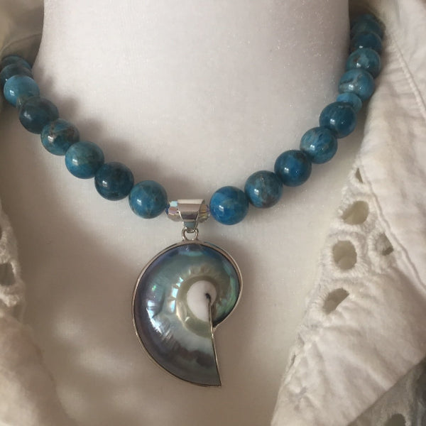 BLUE APATITE WITH NAUTILUS SHELL