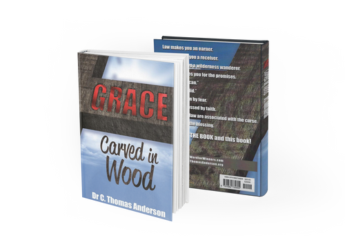 Grace Carved in Wood (Paperback Book) - The Word for Winners