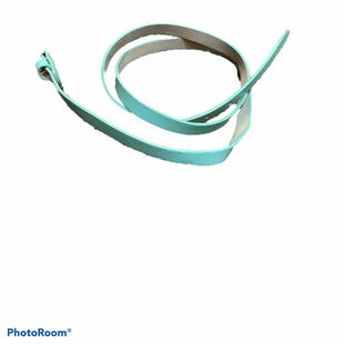 Primary Photo - BRAND:    CLOTHES MENTOR STYLE: BELT COLOR: MINT SIZE: 0 SKU: 256-25673-9743