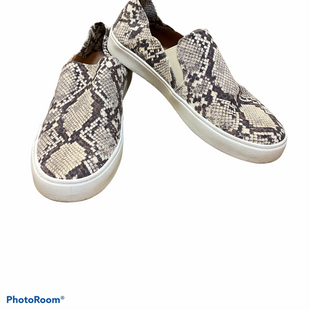 Primary Photo - BRAND: STEVE MADDEN STYLE: SHOES FLATS COLOR: SNAKESKIN PRINT SIZE: 7.5 SKU: 256-25661-14509