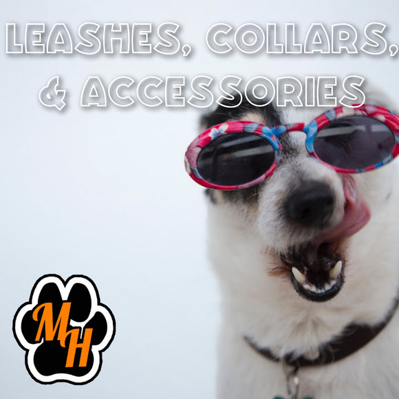 Collars, Leashes, & Accessories