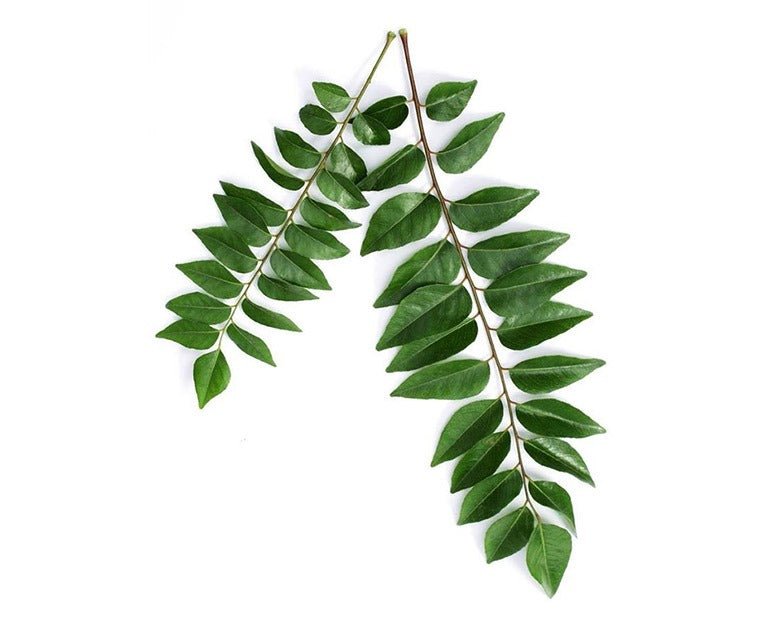 Curry Leaves - 100g