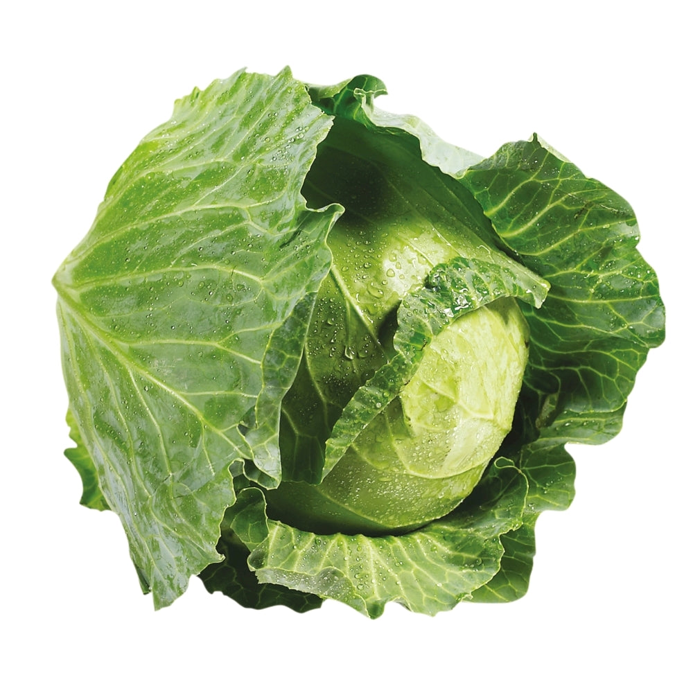 Cabbage, Green, each