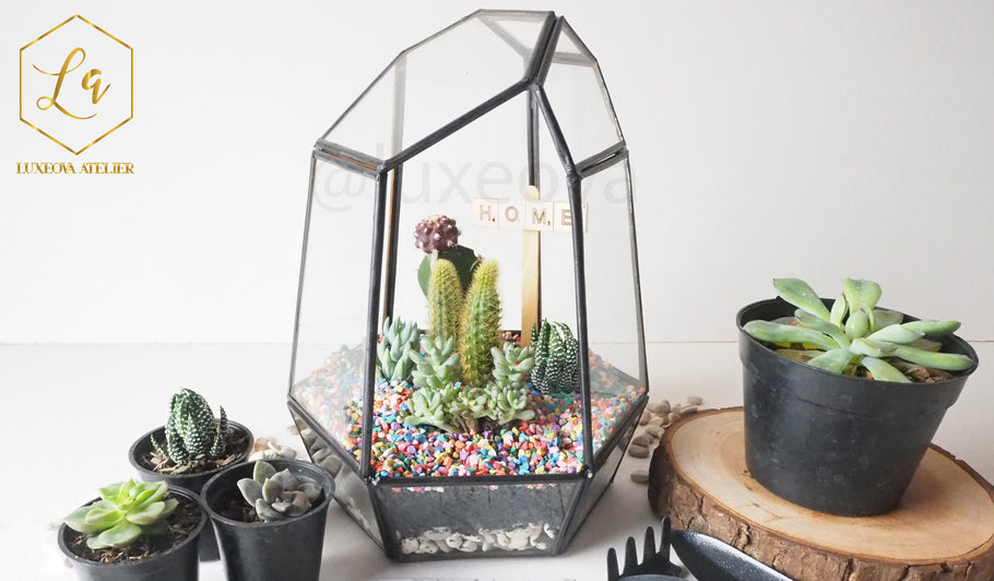 Workshop: Story about Learn to Create Basic Terrarium with Tsum Tsum Figurine