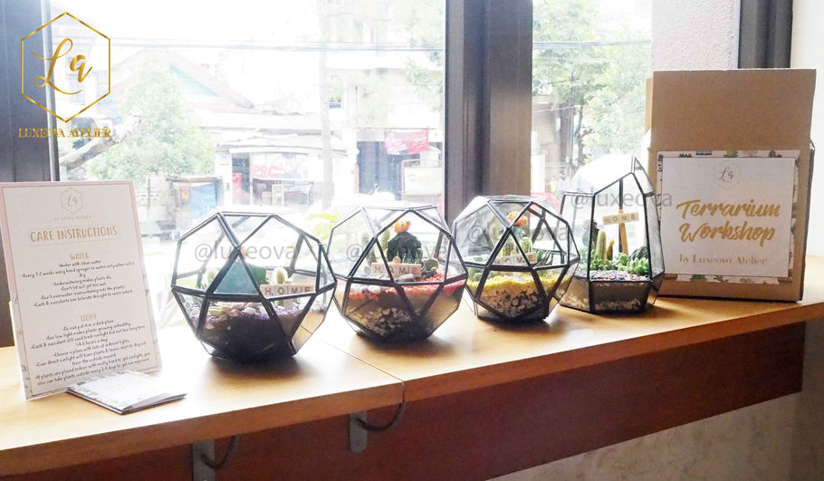Workshop: Story about Learn to Create Basic DIY Terrarium Collaborate with Wewo Craft