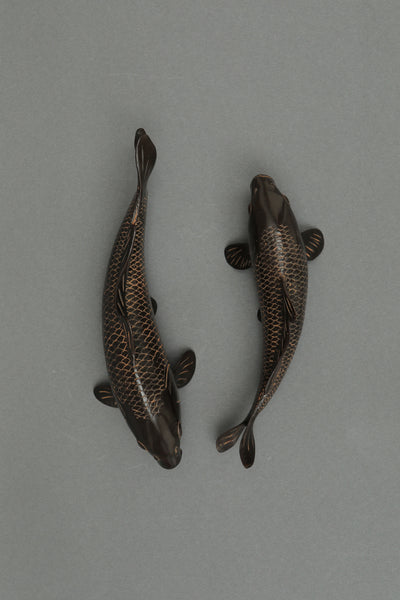 Pair of Mini Koi Fishes