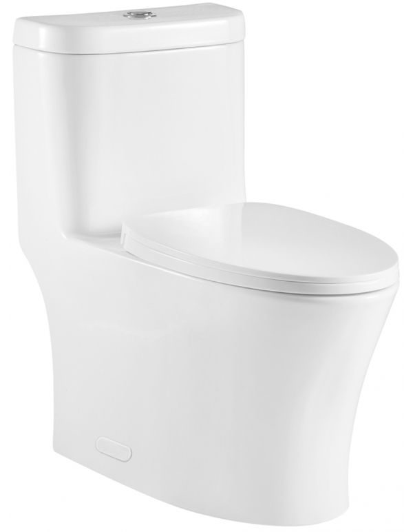 ONE PIECE OVAL TOILET WITH SOFT CLOSING SEAT AND DUAL FLUSH HEIGHT 29 7/10""