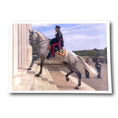 Postcard-Horse climbs Old College steps at RMAS