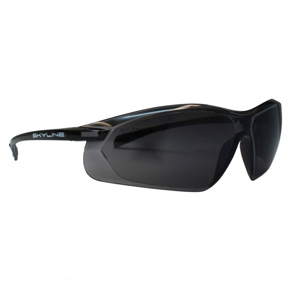 SAFETY GLASSES ANTIFOG SKYLINE - SMOKE