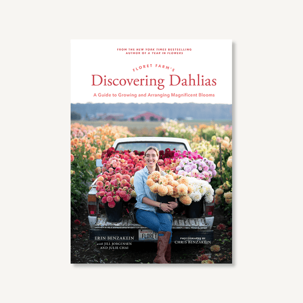 Discovering Dahlias Book