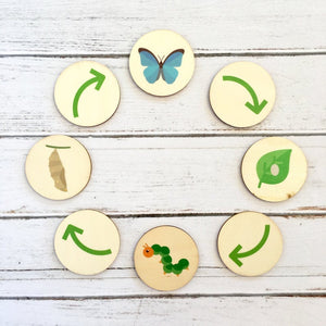 My Little Set - Life Cycle of a Butterfly