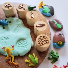 Frog Lifecycle Stamp Set