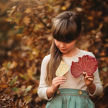 Load image into Gallery viewer, Your Wild Child: more nature play activities for kids