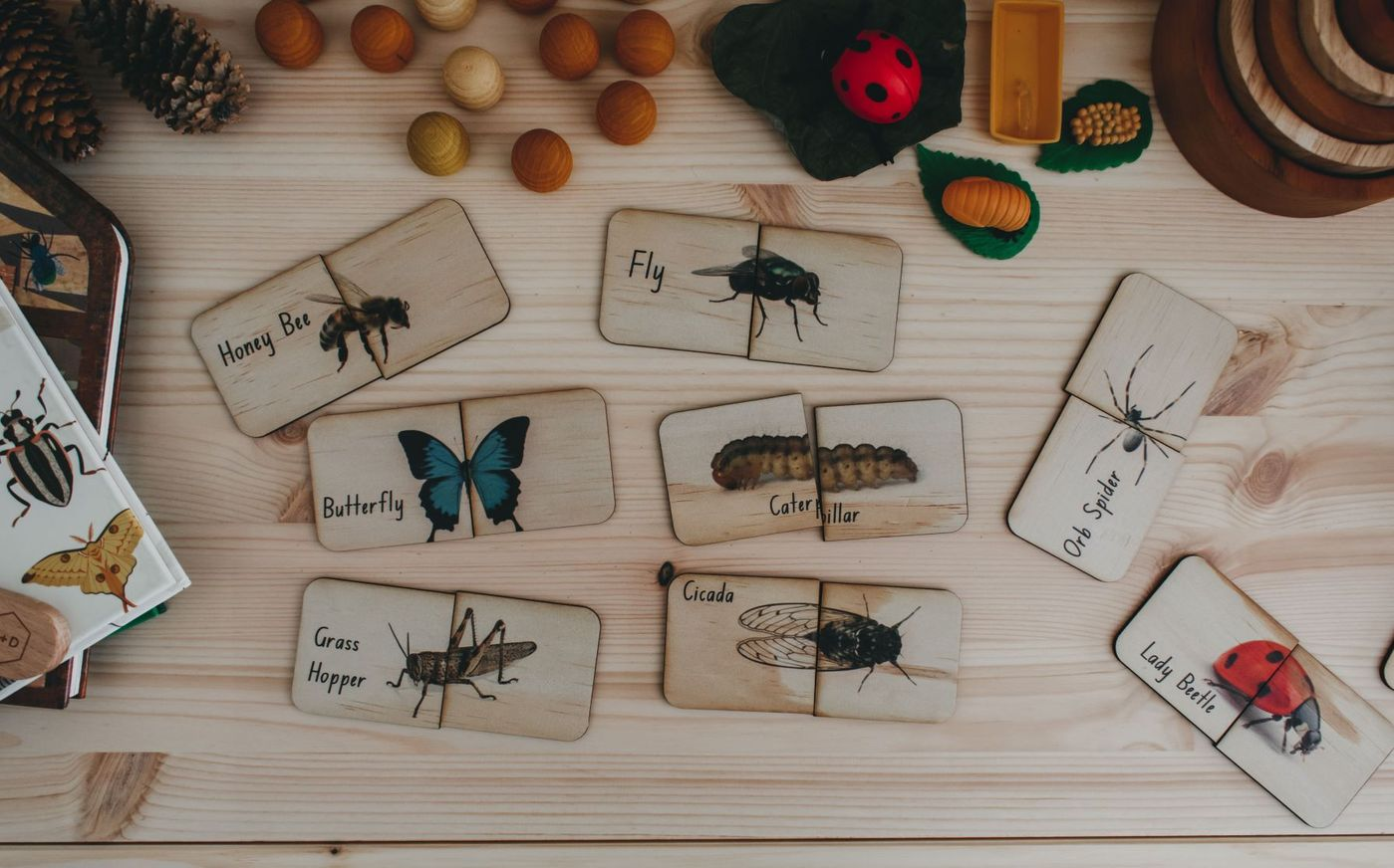 5 Little Bears - Garden Bugs Matching Puzzles