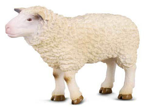 CollectA - Sheep
