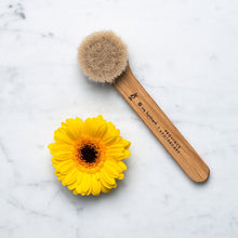 Load image into Gallery viewer, Province Apothecary Daily Glow Facial Dry Brush