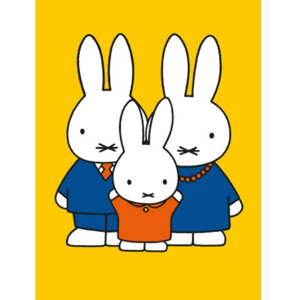 QDB105 Bekking & Blitz Card Dick Bruna Miffy - My Messy Room