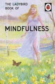 Ladybird Book of Mindfulness - My Messy Room - 1