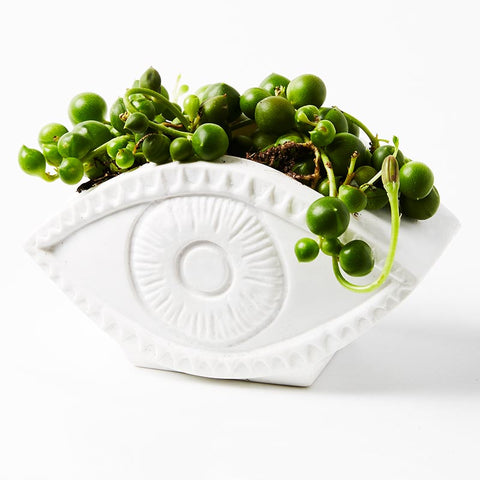 Jones and Co Evil Eye Planter